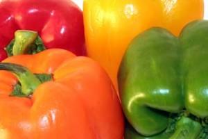 Gardening Vegetables